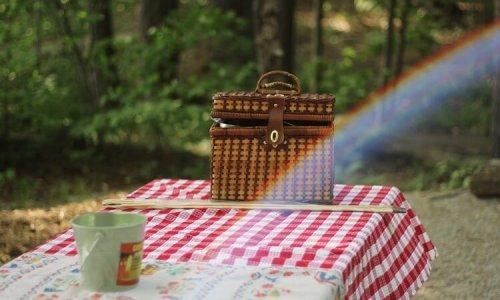 picnic-dam
